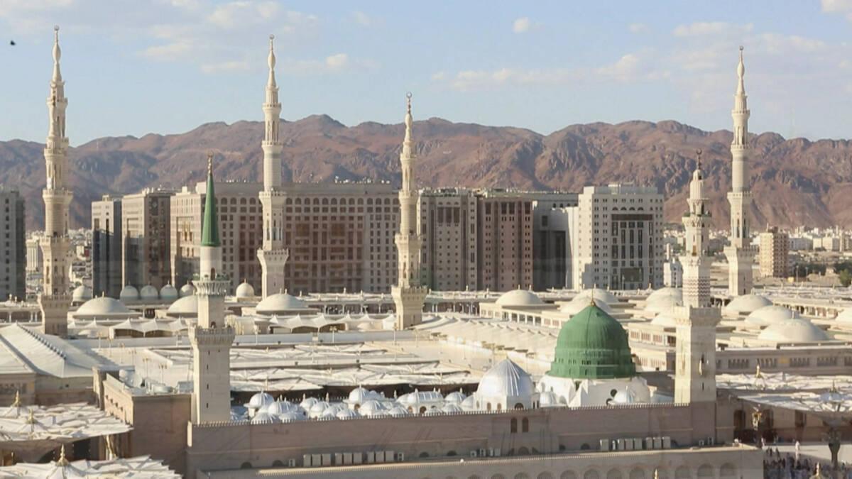 Fatih Savaş Kutsal Topraklarda - Pergamber Efendimizin Naaşını Almaya Çalışanların Öyküsü