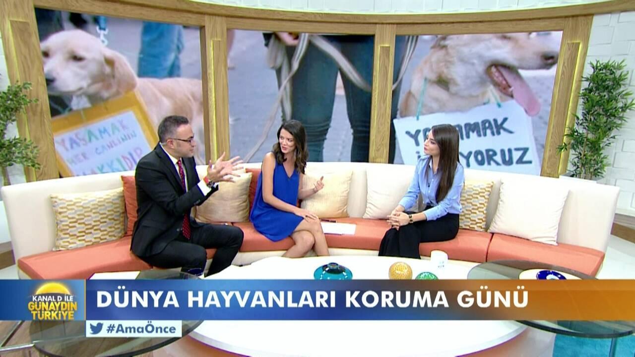 Kanal D ile Günaydın Türkiye - 04.10.2017