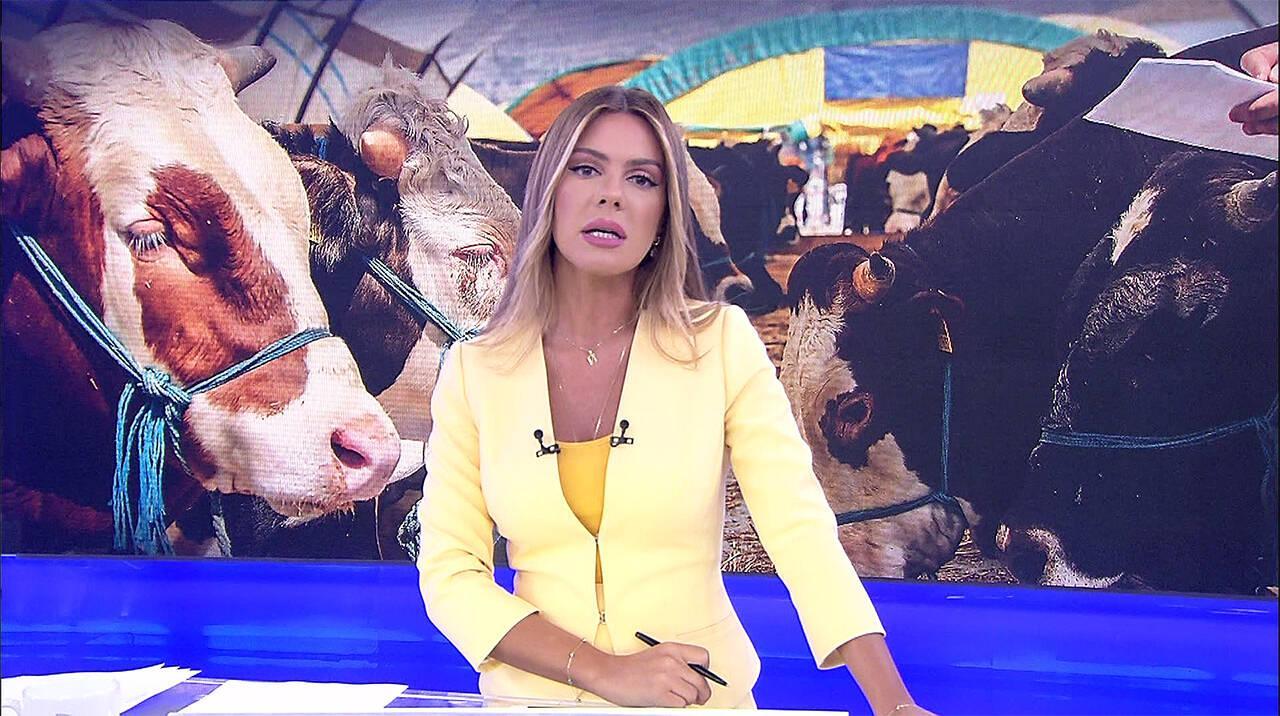 Kanal D Haber - 09.08.2019
