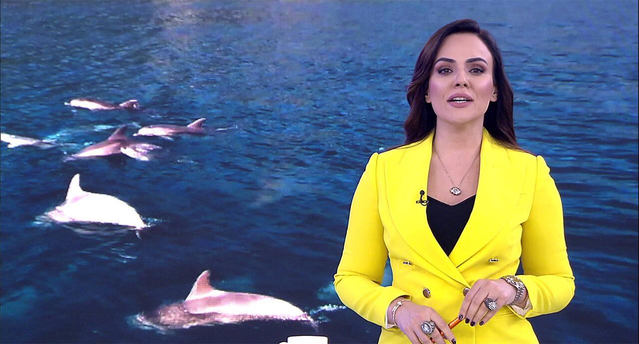 Buket Aydın'la Kanal D Haber - 22.11.2019