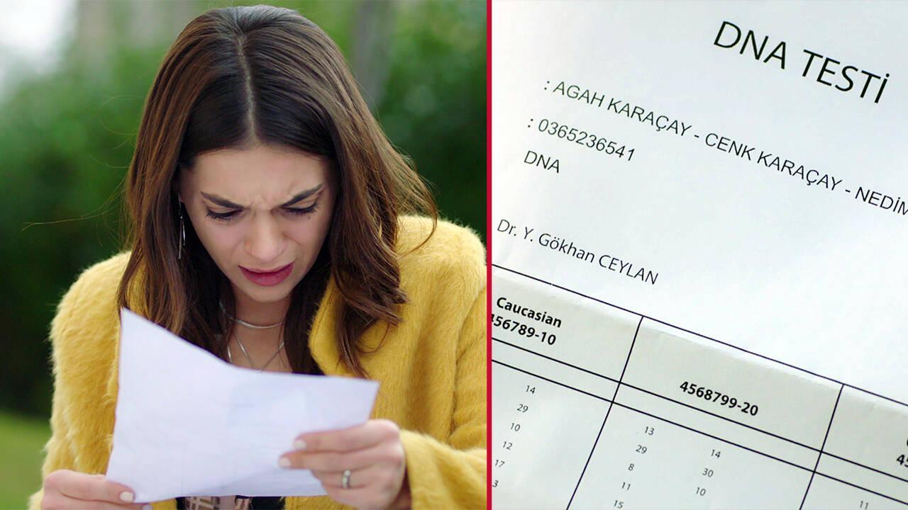 DNA testinde şoke eden gerçek!