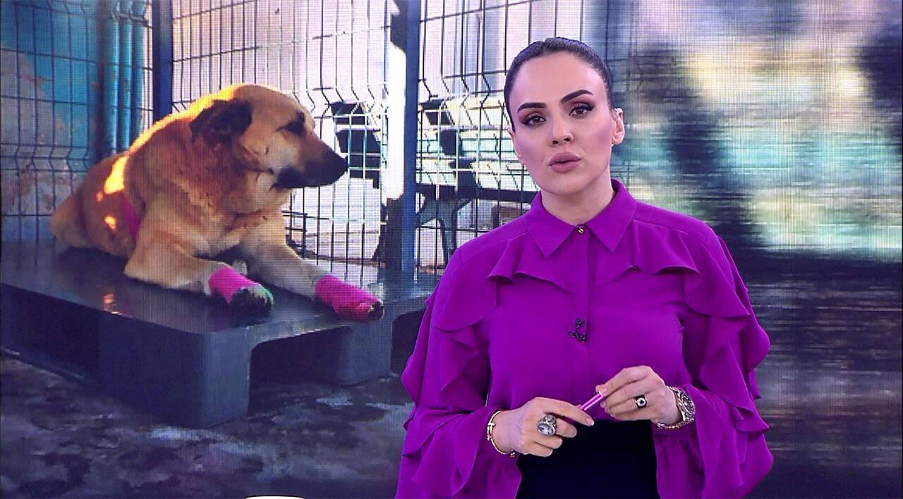 Buket Aydın'la Kanal D Haber - 17.02.2020