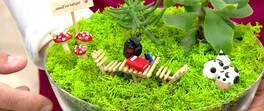 Kendimize Minyatür Bahçe Yapalım!