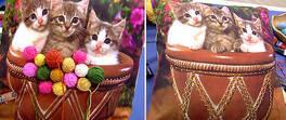 Yumaklı Kedi Yastık Yapımı