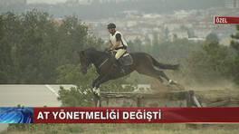 At Yönetmeliği
