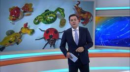 Kanal D Ana Haber Bülteni - 09.12.2015