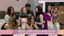Daniela elendi, Tankut gözyaşlarına boğuldu!