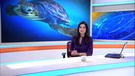 Kanal D Ana Haber Bülteni - 15.08.2016