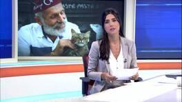 Kanal D Ana Haber Bülteni - 15.09.2016