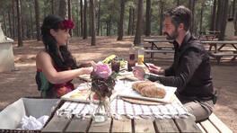Semih ve Hazal piknikte neler yaşadı?