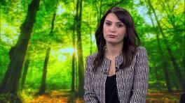Ahmet Hakan'la Kanal D Haber - 12.02.2017