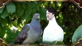 Alina Boz'un üstüne pisleyen kuş!