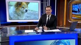 Ahmet Hakan'la Kanal D Haber - 29.04.2017