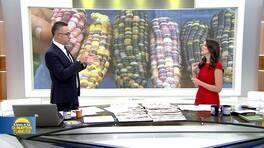Kanal D ile Günaydın Türkiye - 22.09.2017