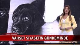 Kanal D Haber Hafta Sonu - 16.06.2018