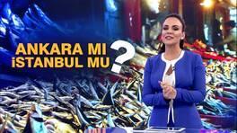 Buket Aydın'la Kanal D Haber - 14.11.2018