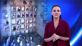 Buket Aydın'la Kanal D Haber - 24.12.2018