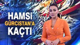 Buket Aydın'la Kanal D Haber - 26.12.2018