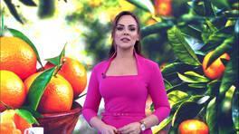 Buket Aydın'la Kanal D Haber - 02. 01. 2019