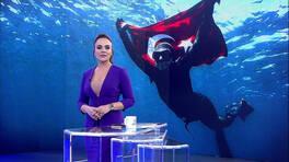 Buket Aydın'la Kanal D Haber - 05. 02. 2019