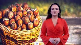 Buket Aydın'la Kanal D Haber - 01. 03. 2019