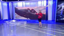 Buket Aydın'la Kanal D Haber - 11. 03. 2019