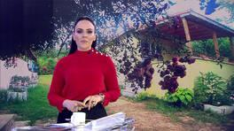 Buket Aydın'la Kanal D Haber - 17.06.2019