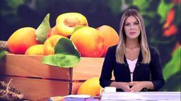Kanal D Haber - 14.08.2019