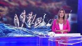 Kanal D Haber - 16.08.2019