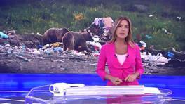 Kanal D Haber - 21.08.2019