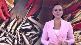 Buket Aydın'la Kanal D Haber - 19.09.2019