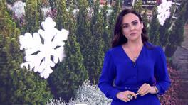 Buket Aydın'la Kanal D Haber - 20.12.2019