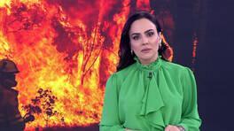 Buket Aydın'la Kanal D Haber - 07.01.2020