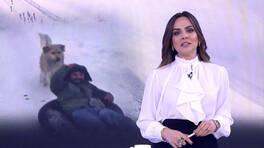 Buket Aydın'la Kanal D Haber - 14.01.2020