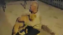 Yer: Zonguldak... 3 aydır kayıp köpeğiyle kavuşma anı duygulandırdı | Video