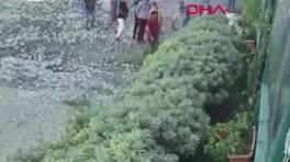 Son Dakika Haberleri: Restoranı basan değnekçiler kamerada |Video