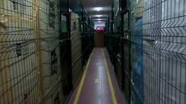 Son Dakika Haberler... Üniversiteli öğrencilerin ev eşyası depolara emanet | Video