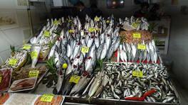 Tezgahlarda balık fiyatları   Video