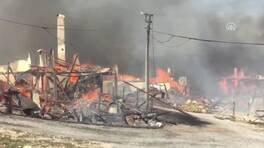 Son dakika... Bolu'da Kuzfındık köyünde yangın | Video