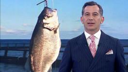 Kanal D Ana Haber - 09.11.2020