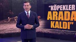 Kanal D Ana Haber - 16.12.2020