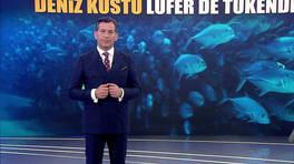 Kanal D Ana Haber - 26.01.2021