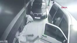 Sürüngen hırsızlar kamerada