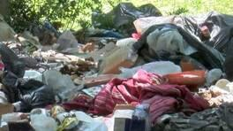 Piknikçilerden geriye çöpü kaldı