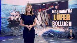 Kanal D Haber Hafta Sonu - 24.10.2021