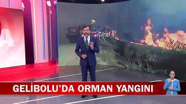 Kanal D Ana Haber - 06.07.2020
