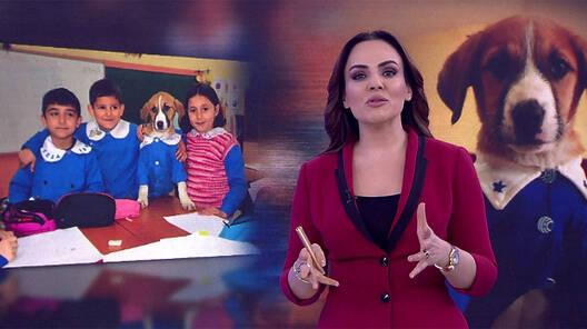Buket Aydın'la Kanal D Haber - 19.02.2020